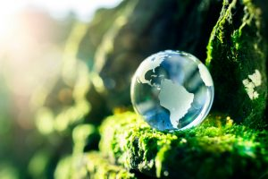 Glass,Globe,In,The,In,Nature,Concept,For,Environment,And